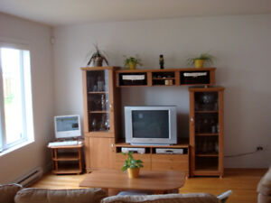 TV Unit with Wine Glass Cabinet