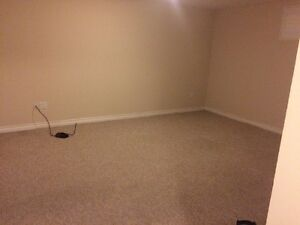 2 bedroom basement apartment all inclusive  Cambridge Kitchener Area image 1