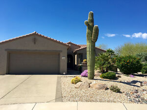 Sun City Grand, beautiful home and patio with golf cart included