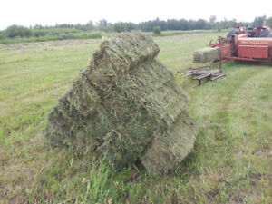 Hay/Pasture Land for Rent close to Sherwood Park