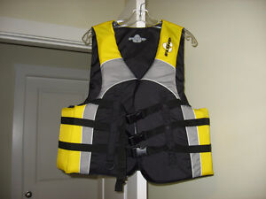 3 PFDs (Personal Flotation Devices)