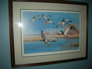 Limited Edition Print Ducks Unlimited