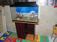 30 GL Tank / Canopy / Stand / Accessories...