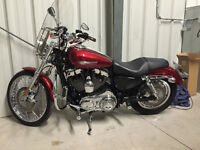 2008 Sportster XL1200C low km