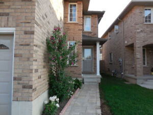 1 Large bedroom basement apartment for rent