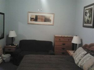 Central, Clean, Quiet, Furnished Room for Rent - For June 1
