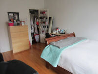 Furnished bedroom in a 2 bedroom apartment available