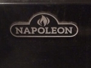 Napoleon bbq 2 years old.  Not used too much
