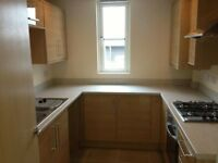 **Brand New** 1 Bedroom Flat