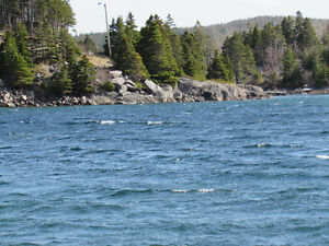 200 FT OCEANFRONT PROPERTY..COLLIERS, OPPORTUNITY KNOCKS! St. John's Newfoundland image 11