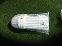 Men's cricket pads