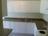 NEWLY RENOVATED 3 BEDROOM TOWNHOUSE FOR RENT