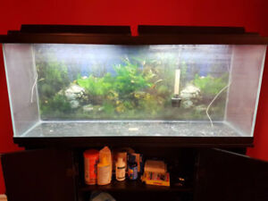 55 Gallon fish tank, everything include, just add water and fish