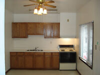 UOFW, ST.CLAIR STUDENTS, DOWNTOWN RENOVATED 3 BEDROOM!!