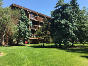 Fantastic Condo located in the Vibrant City of Camrose!