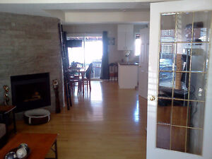 4 bedrooms. Near all. Bus direct UOttawa or downtown. 说中文