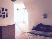 Spacious double bedroom to let in Wollaton, Nottingham