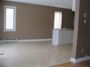 Large 2 chambres a coucherau #2-1024 Rue Notre Dame, Gatineau Gatineau Ottawa / Gatineau Area image 9