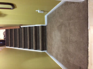 install . carpet . vinyl . laminate