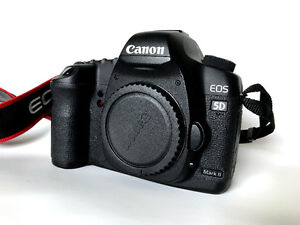 Canon 5D Mark ii w/2 batteries, battery grip and 6 cf cards