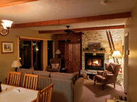 MT. TREMBLANT - Immaculate Condo near mountain