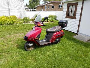 Scooter Élite 250 cc