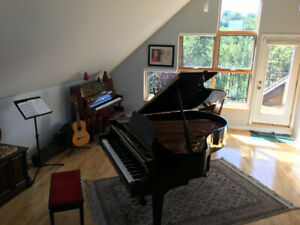Piano Lessons Edmonton   Find or Advertise Vocal, Musical