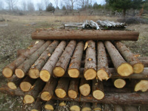 Cedar Posts and Cedar Pickets for Sale