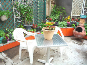 -  SUBLET - CENTRAL FRNSHED BACHELOR SUITE