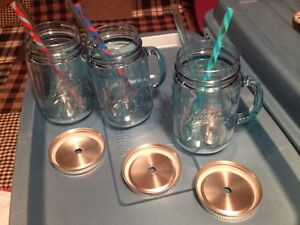 Insulated drinking cups Kingston Kingston Area image 1
