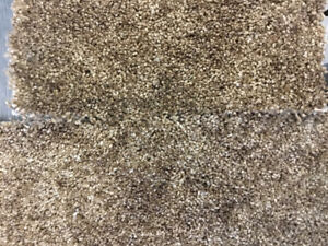100% Nylon Carpet On Sale Calgary 1.25 Sq. Ft.