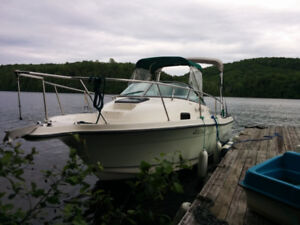 Fishing boat, pleasure boat