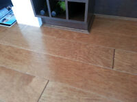 Professional Flooring Installers with over 16 yrs of experience