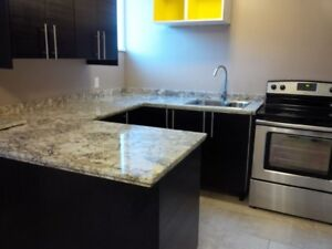 Beautiful Downtown One Bedroom Apartment for February 1, 2019