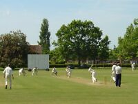Cricketers wanted for social Sunday club in South London