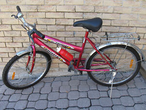 "Girls/Ladies single speed 20"" bike"