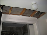 CRAPAUD - Drywall ceiling repair