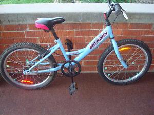 Raleigh Bighorn Kids Bike