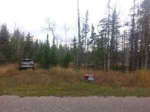 Vacant land on Manitoulin island