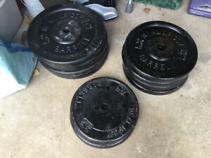 Real McCoy Steel Barbell Weight Plates
