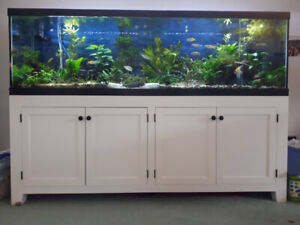 Fluval | Kijiji in British Columbia  - Buy, Sell & Save with