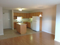 HUGE 1bdm, Executive bldg! CENTRAL, In-suite Laundry, June FREE!