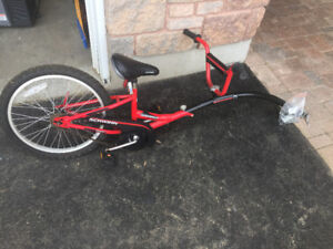 Kids Trailer Bike