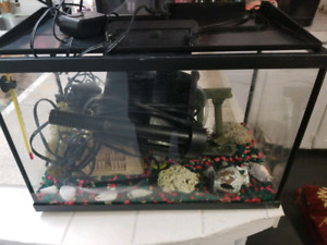 Full 5 gallon aquarium kit