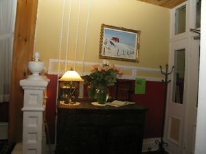 Outstanding furnished apartment! St. John's Newfoundland image 7