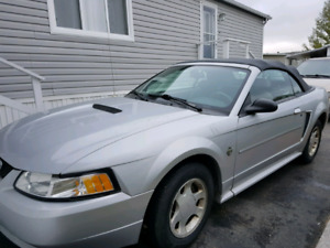 Off Season Deal!!! 1999 Mustang Convertible