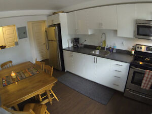 3 Bedroom - Great Location - FULLY FURNISHED Kitchener / Waterloo Kitchener Area image 7