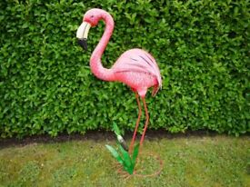 Freddy the Garden Flamingo