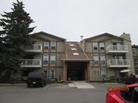 2 Bedroom Adult Only Condo in Clearview