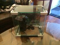12x12 fish tank with curved sides. Heater & filter.